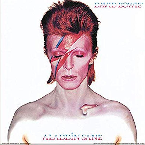 de platenzaak eindhoven | Vinyl | David Bowie alladin sane